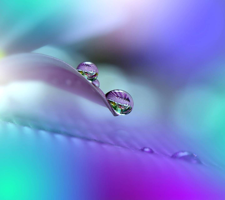 Colorful Raindrops wallpapers by zedge