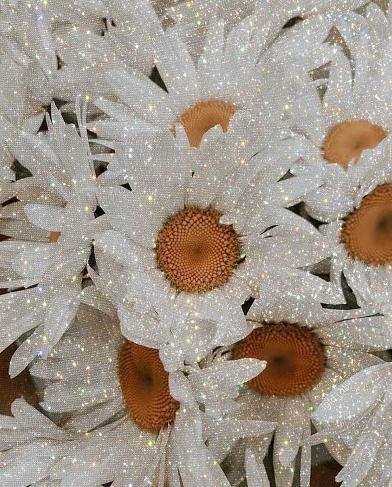 Aesthetic glitter