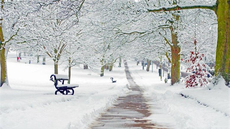 Stunning Winter Season HD Wallpapers Desktop Backgrounds