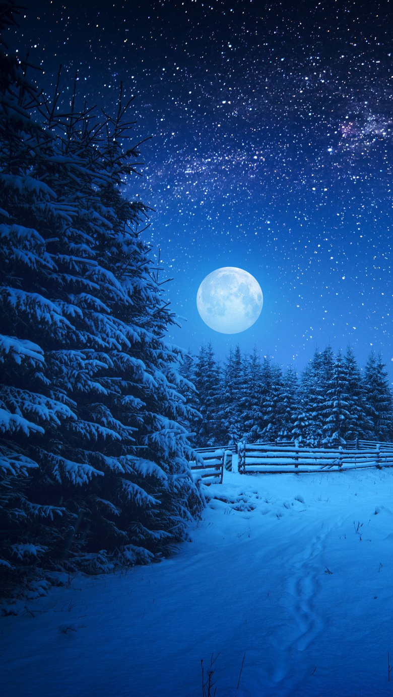 Full Moon Night in Winter Season Wallpapers