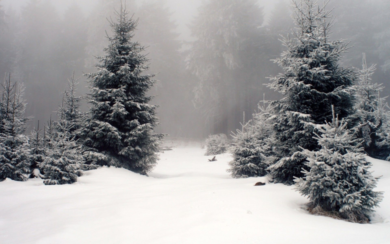 Super HD Wallpapers of Winter Season