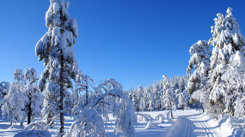 Nice Snow Wallpapers