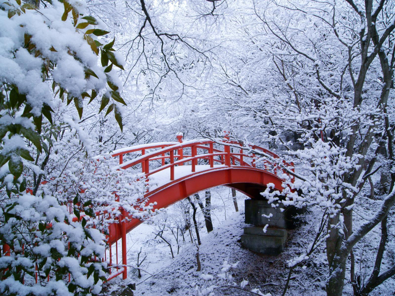 Winter Nature Wallpapers Group