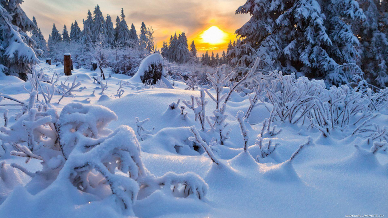 Winter Season Natures Nature Landscape Winter Wallpapers