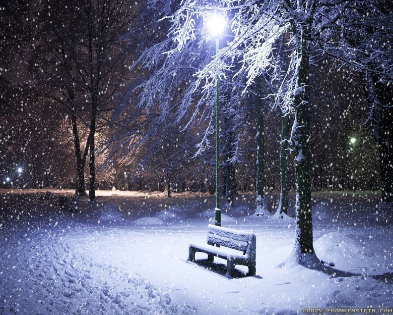 Romantic Winter Park Wallpapers
