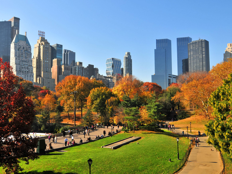 Central Park In Nyc During Autumn