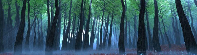 Nature Computer Wallpapers Desktop Backgrounds