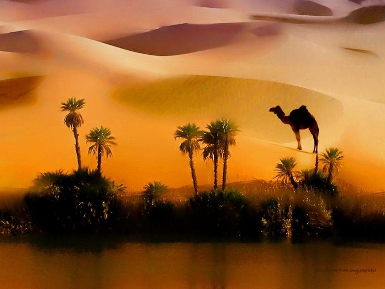 Desert Painting Art Nature Sahara Wallpapers Desert for HD 16 9