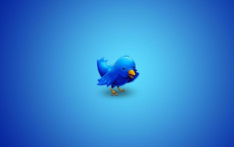 Twitter bird wallpapers