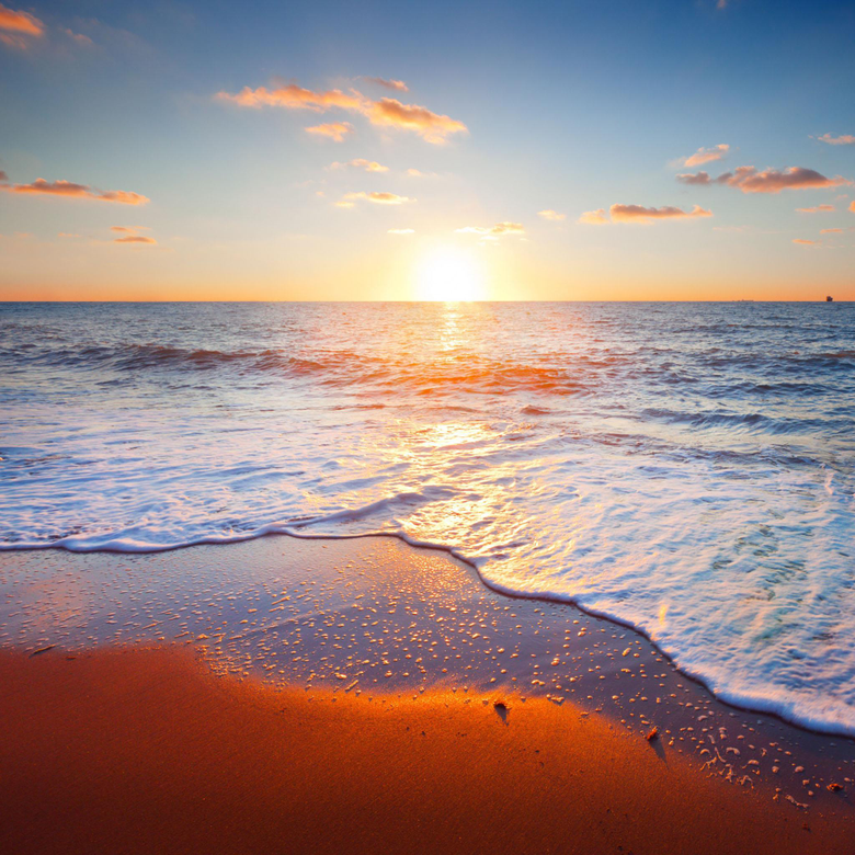 Golden beach iPad Air Wallpapers