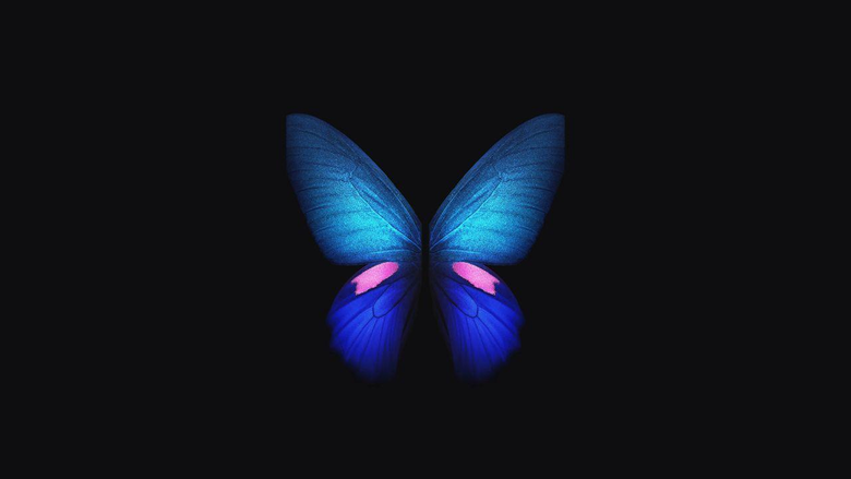 Wallpapers Samsung Galaxy Fold Blue Butterfly Stock 4K Creative