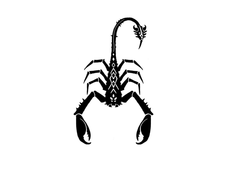 Scorpion Wallpapers Backgrounds