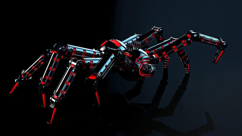 Black Widow Spider HD