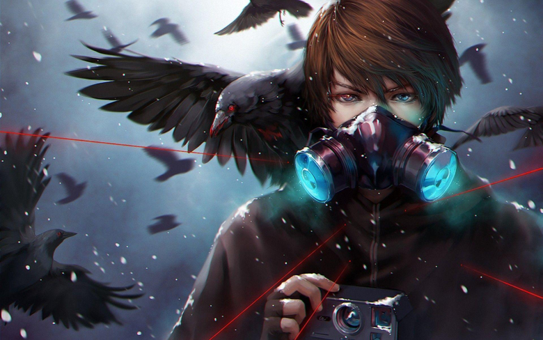 Call of the Crows Full HD Wallpapers and Backgrounds Image