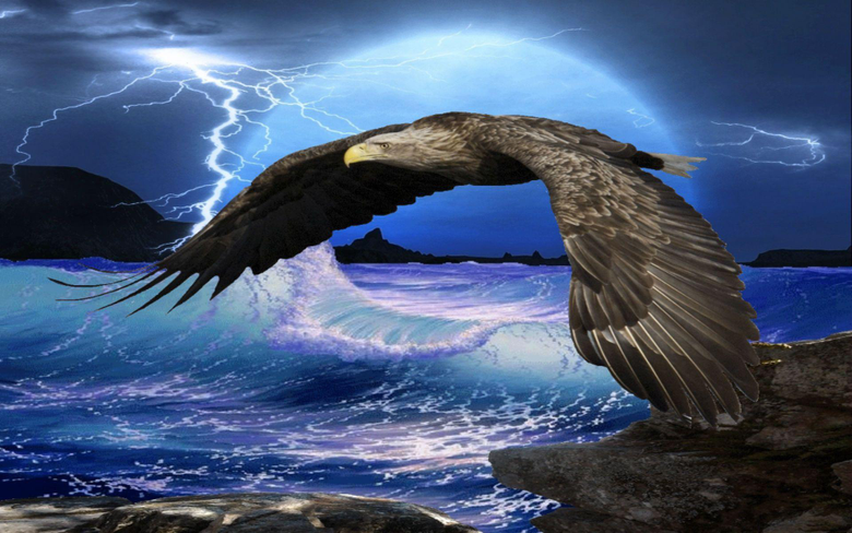 Flying Eagle HD Wallpapers