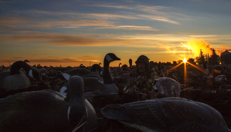 Goose Hunting Wallpapers