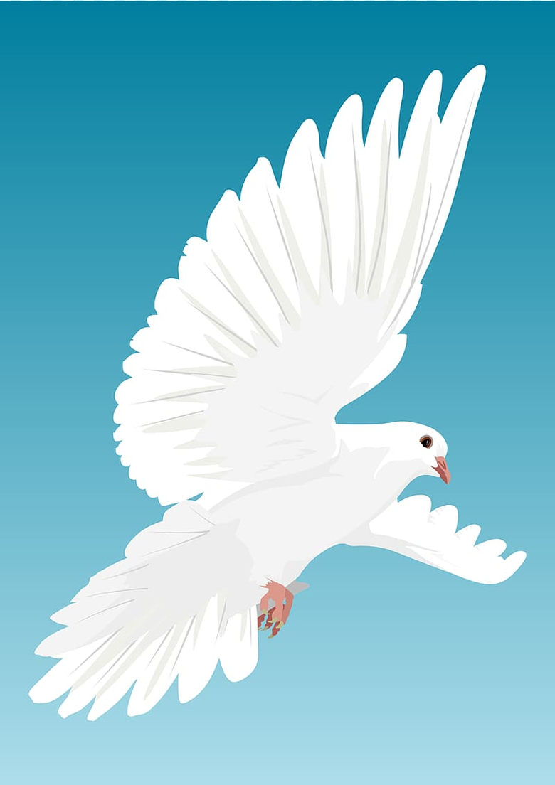 Dove Backgrounds