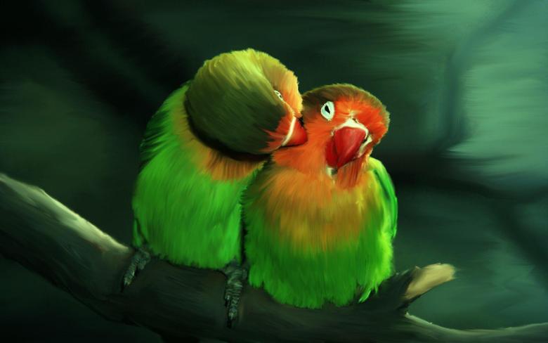 Beautiful Birds Desktop Wallpapers