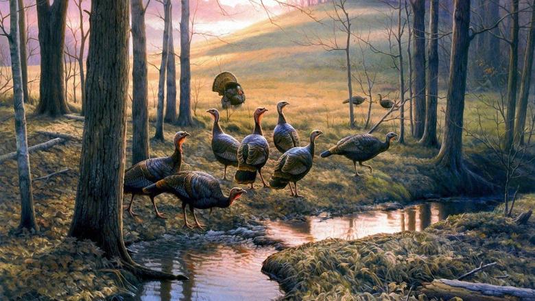 Turkey HD Wallpapers