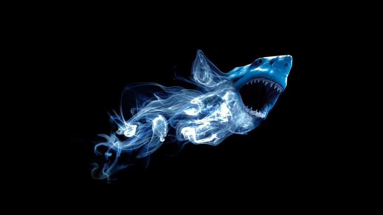 Shark 3D Wallpapers