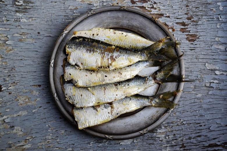 cuisine design fish food image photos fresh