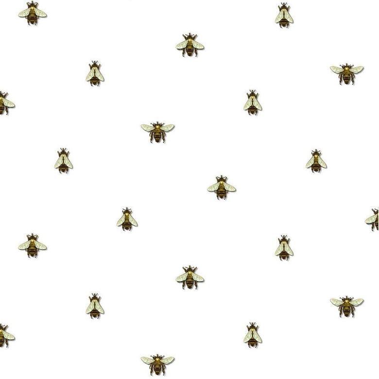 Timorous Beasties Wild Honey Bee Spot Wallpapers