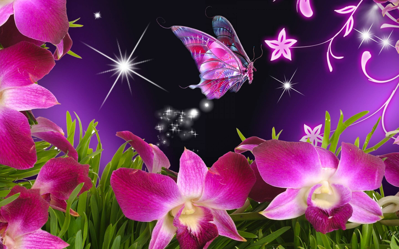 Beautiful Butterflies Wallpapers Wallpapers