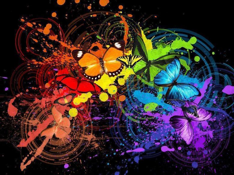 Most Beautiful Butterflies Wallpapers