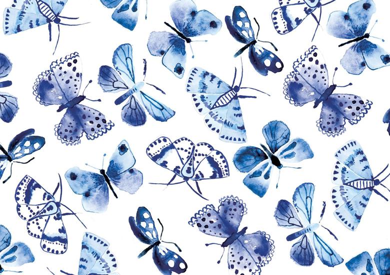 Blue Butterflies Wallpapers