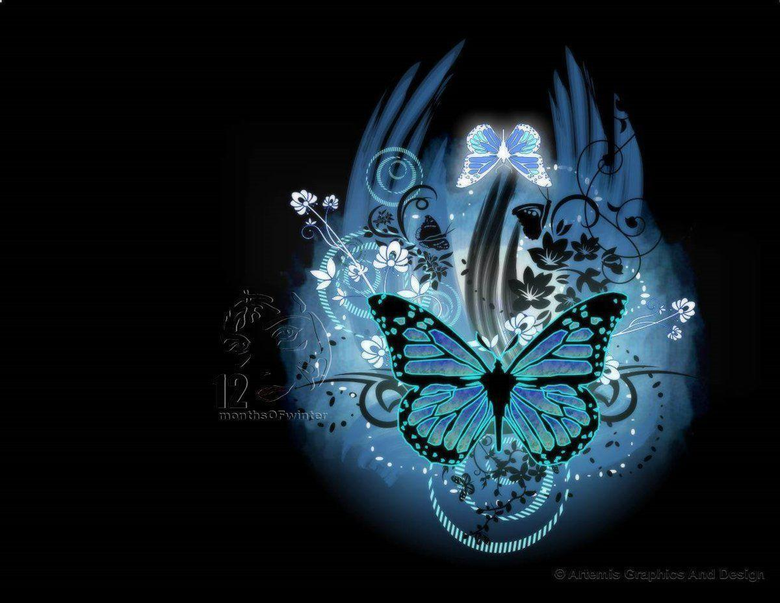 Most Beautiful Butterflies Wallpapers colorfull deskop backgrounds