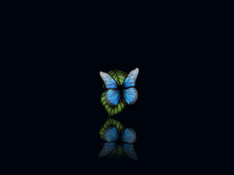 Butterfly wallpapers hd with beauty butterfly wallpapers image with