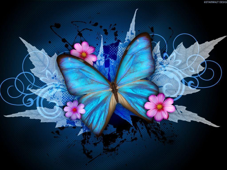 Pink Butterfly Wallpapers Pink and With with Cute Flower