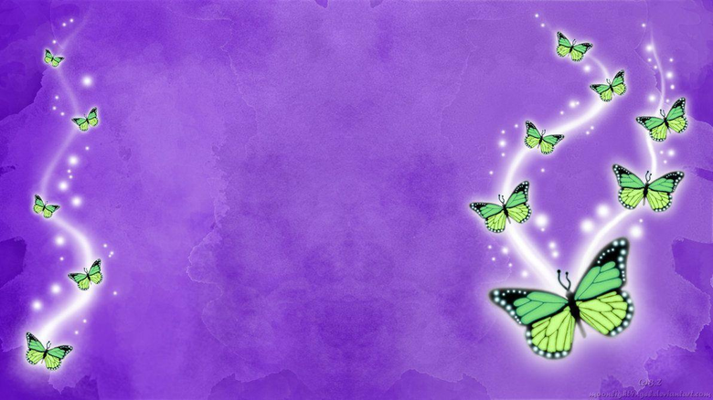 Latest Butterfly HD Wallpapers