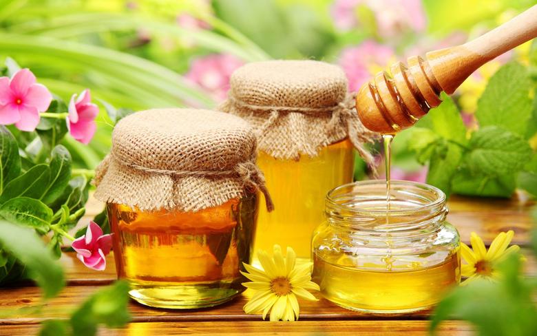 Honey Bee Wallpapers