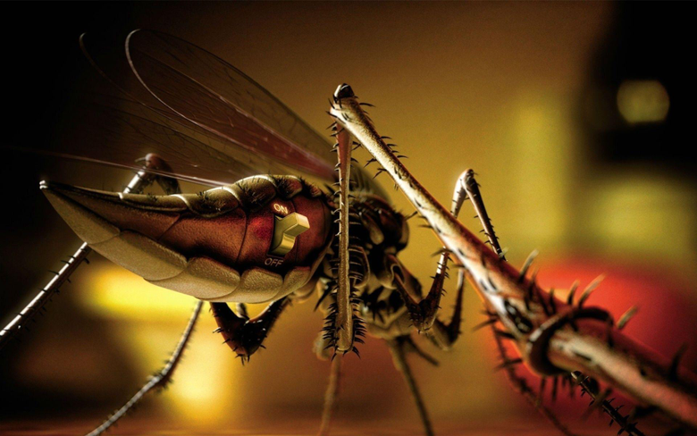 Artwork mosquito wallpapers