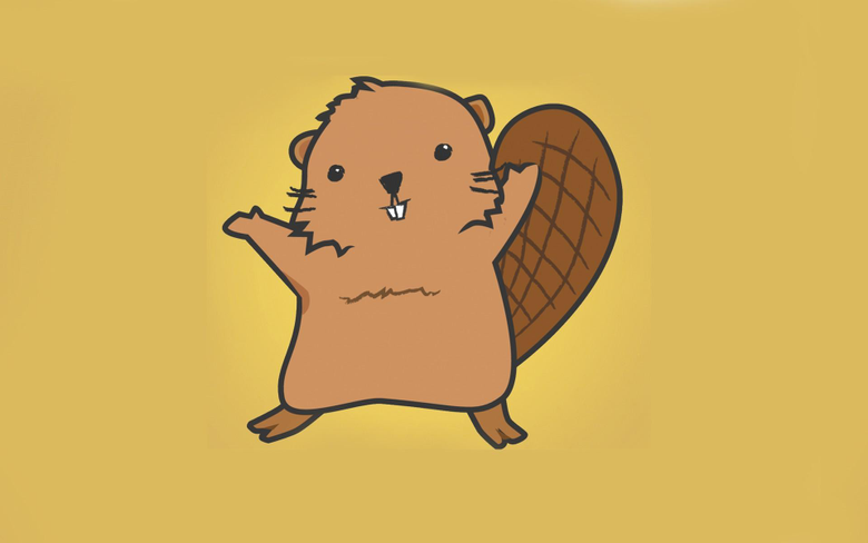 Beaver Wallpapers HQ 28986