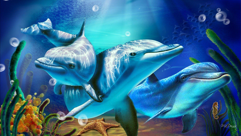 D Living Dolphin HD Wallpapers