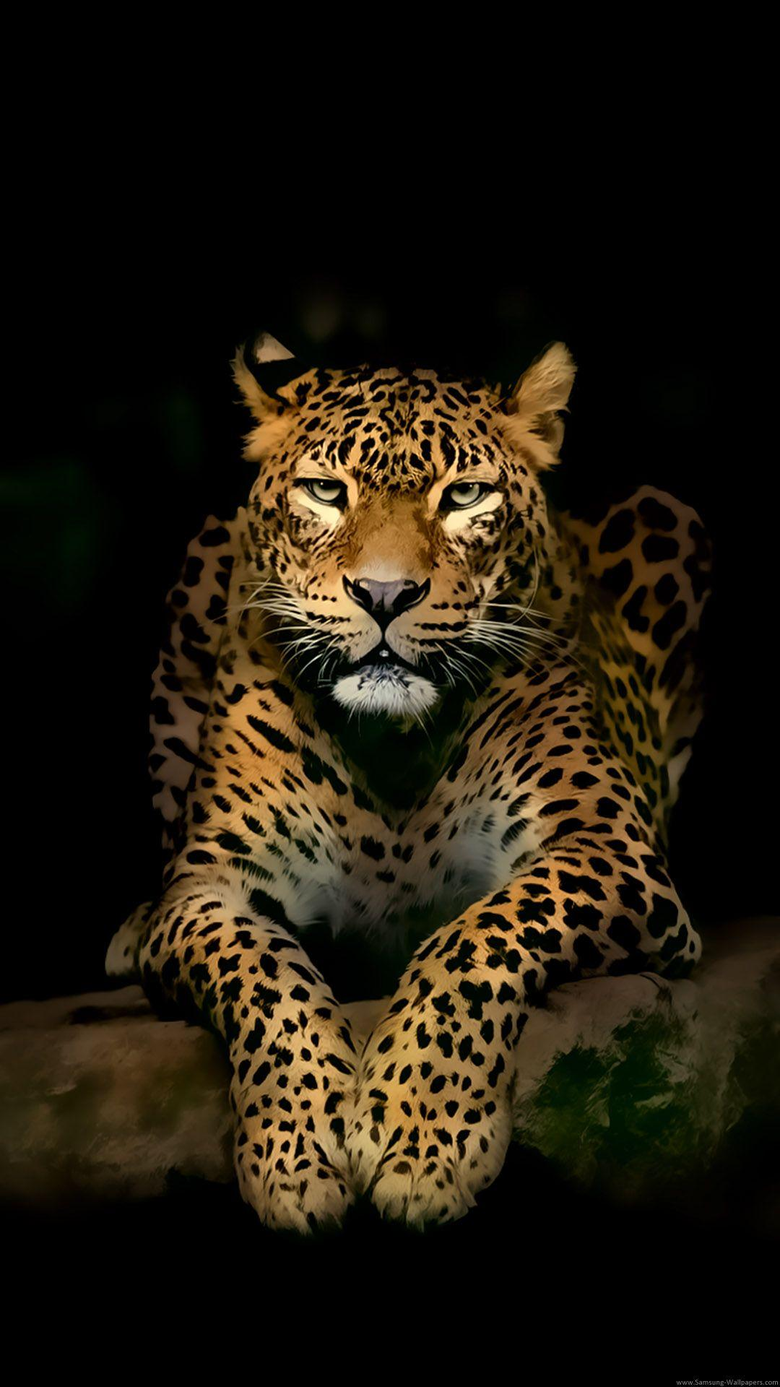 Serious Leopard Lockscreen preview and
