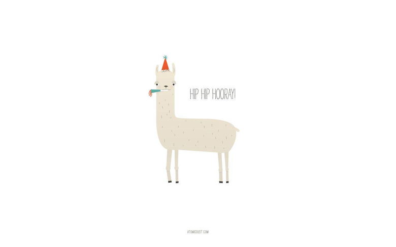 Llama Wallpapers 17