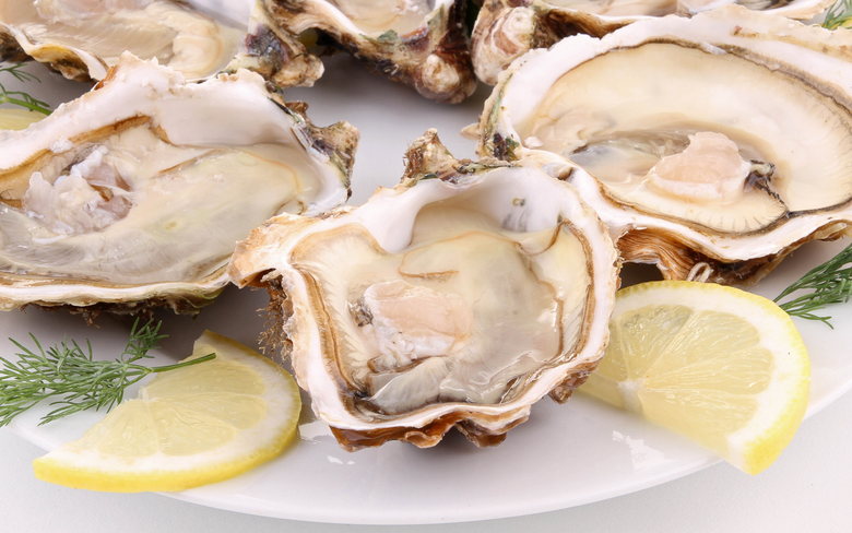 wallpapers 2560x1600 oysters clams dish lemon