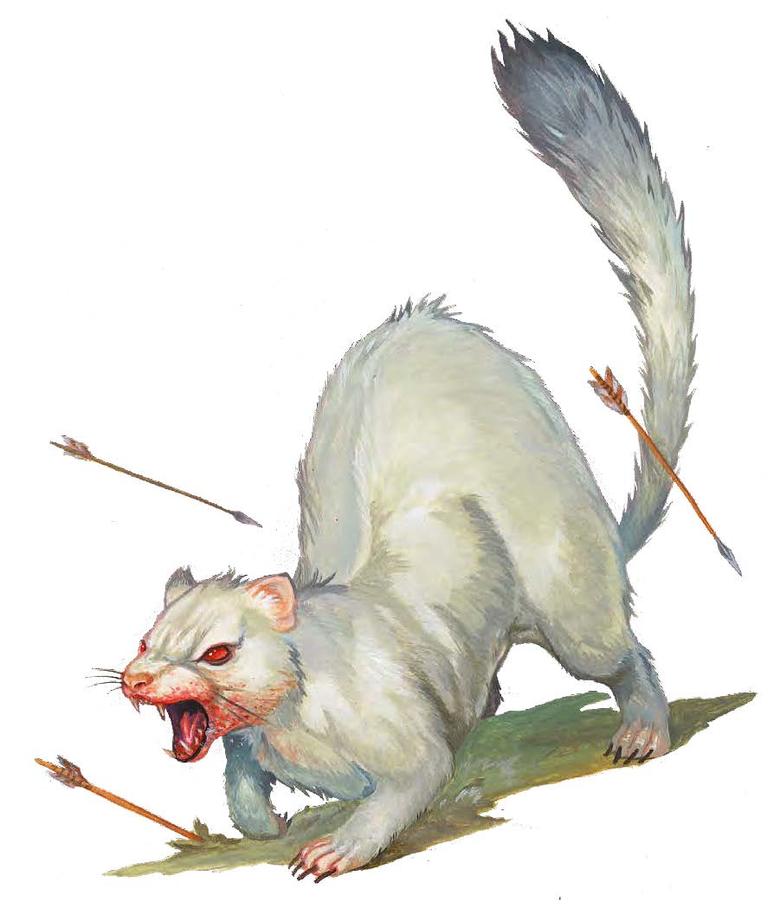 Expanding Codex Albino Death Weasel