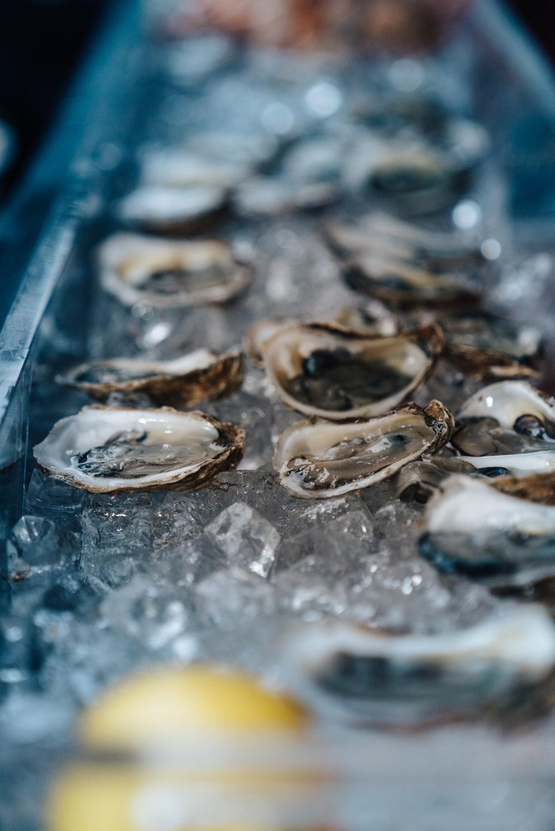 shallow focus photography of oysters on bowl photo