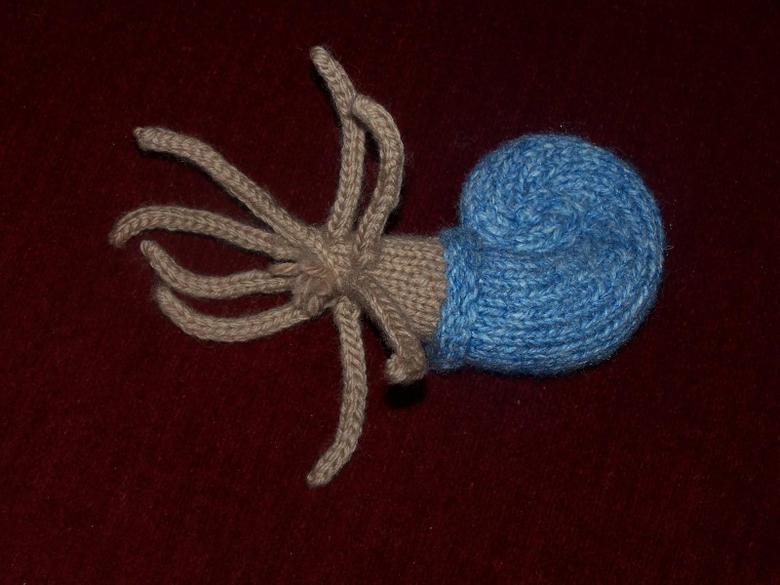 Knitwittering Blue Floyd Nautiloid