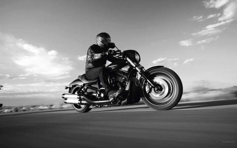 Harley Davidson Night Rod wallpapers