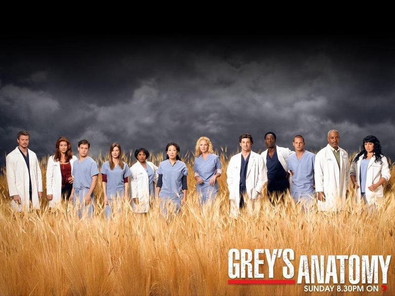 best ideas about Grey s Anatomy