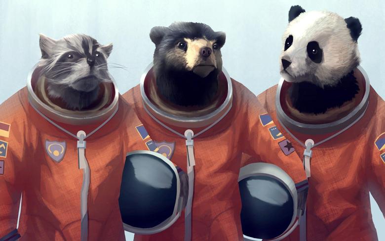Animals Artwork Bears Cosmonaut Furry Panda Raccoons Wallpapers