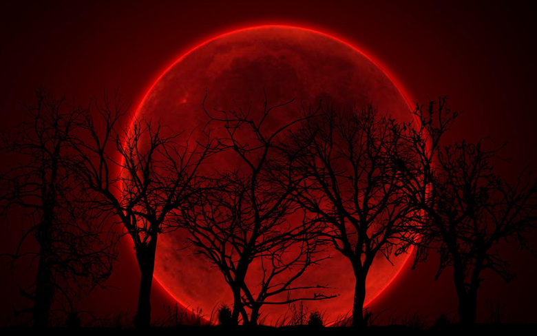 Bloody Red Moon Wallpapers