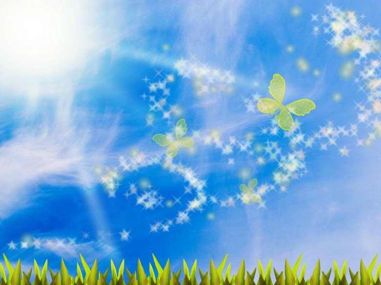 Summer Day With Flower And Butterflies Backgrounds For