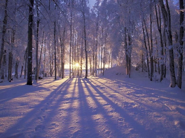 Winter Solstice Pictures