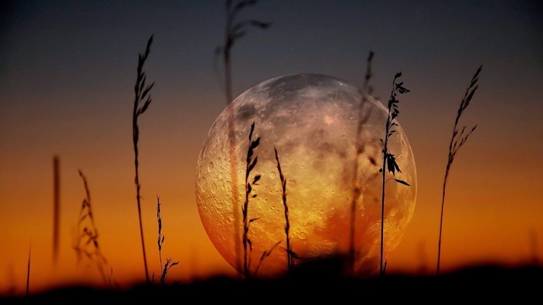 Supermoon Photography Hd Wallpapers